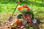 Садовая тележка и урожай овощей и фруктов в саду, фото № 4370467, снято 12 сентября 2012 г. (c) Яков Филимонов / Фотобанк Лори