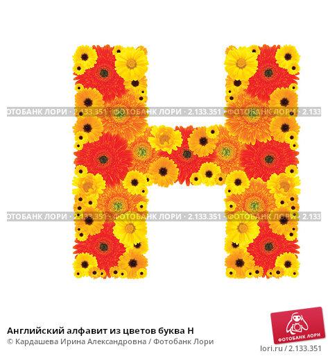 Алфавит из цветов красный
