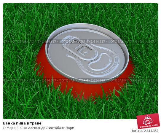 Банка пива в траве, иллюстрация 2614387 (c) Маринченко Александр...