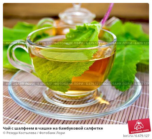Шалфей чай полезный