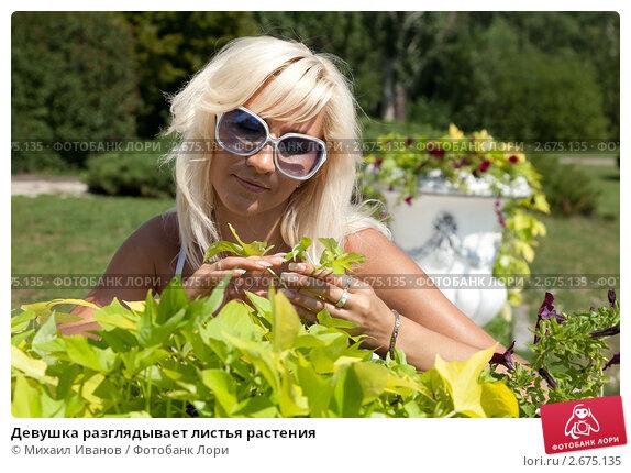 devushki-razglyadivayut-foto
