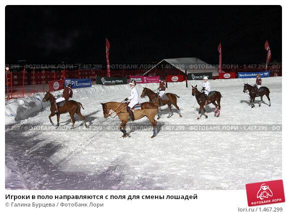 Игроки в поло направляются с поля для смены лошадей, фото 1467299.