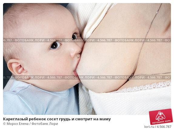 smotret-televedushaya-soset