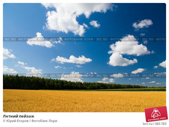 Картины пейзажи фото книга уроков