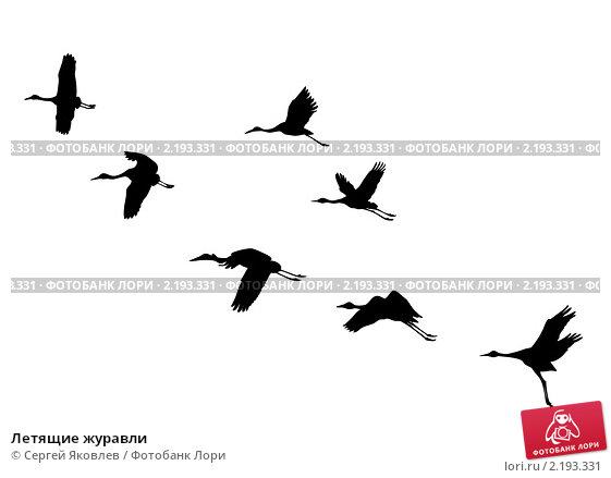 Картинки летящие журавли