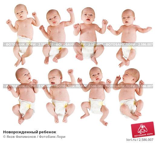 Новорожденный ребенок фото 2586007