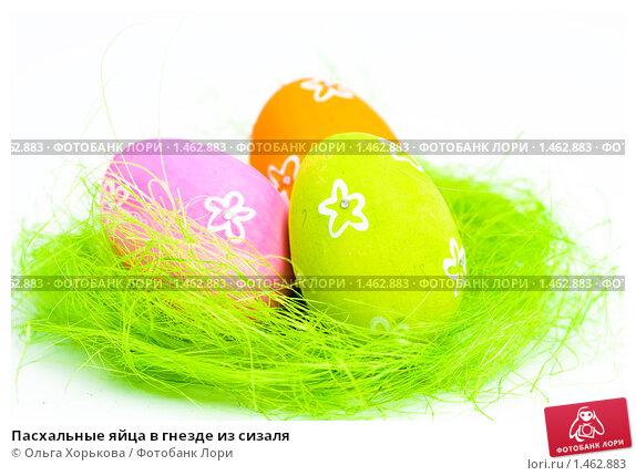 Пасхальные яйца в гнезде из сизаля; фото 1462883, фотограф Ольга Хорькова. Фотобанк Лори - Продажа фотографий, иллюстраций и изо