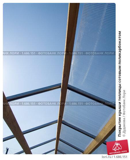 Покрыть крышу теплицы поликарбонатом