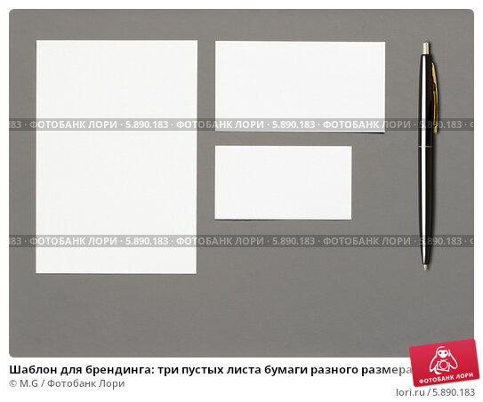 Шаблон для брендинга: три пустых листа бумаги разного размера и шариковая ручка на сером фоне M.G / Фотобанк Лори.
