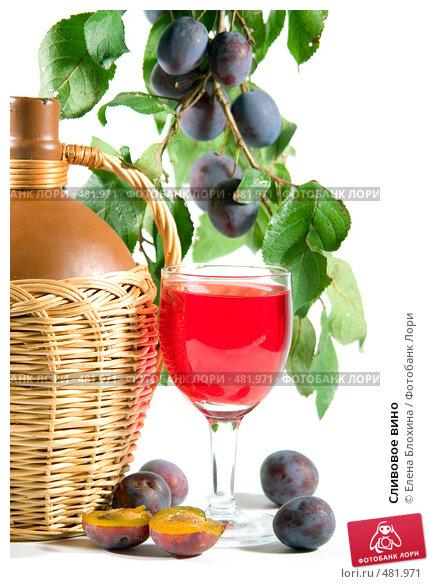 Вино из сливы в домашних условиях самый простой рецепт - Shoprose.ru