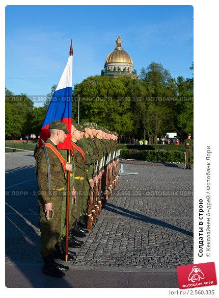 Солдаты в строю фото 2560335 снято 26