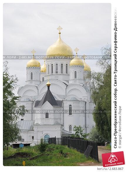 Свято-троицкий серафимо-дивеевский монастырь где находится