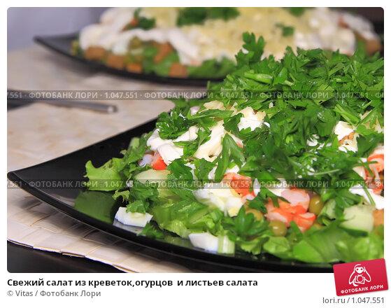 салат из креветками и свежим огурцом фото