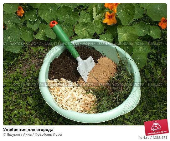 Удобрение для огорода своими руками