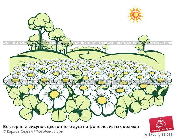 Рисунки из цветов на поле