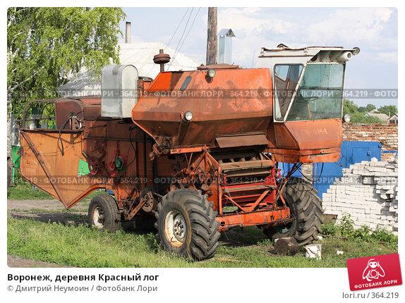 Воронеж, деревня Красный лог, фото № 364219, снято 12 июня 2008 г. (c) Dmitriy N. / Фотобанк Лори