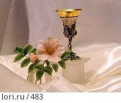 Купить «Цветок и бокал», эксклюзивное фото № 483, снято 26 июля 2005 г. (c) Ирина Терентьева / Фотобанк Лори