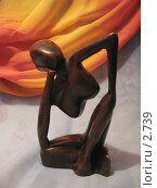 Купить «Фигура женщины. Металл», фото № 2739, снято 22 октября 2018 г. (c) Маргарита Лир / Фотобанк Лори