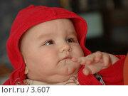 Купить «Младенец в капюшоне», фото № 3607, снято 5 апреля 2006 г. (c) Юлия Яковлева / Фотобанк Лори