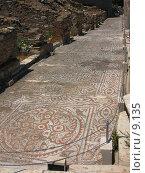 Купить «Мозаичный пол. Эфес, Турция», фото № 9135, снято 27 мая 2018 г. (c) Маргарита Лир / Фотобанк Лори
