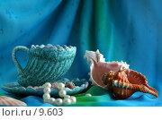 Купить «Морской натюрморт с чайной парой, раковиной и жемчужным браслетом», фото № 9603, снято 27 июня 2006 г. (c) Ольга Красавина / Фотобанк Лори