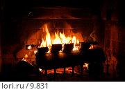 Купить «Огонь в камине», фото № 9831, снято 19 августа 2006 г. (c) Cangaroo / Фотобанк Лори