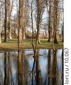 Купить «Отражение деревьев в воде», фото № 10067, снято 22 сентября 2018 г. (c) SummeRain / Фотобанк Лори