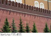 Купить «Москва, Александровский сад, Кремлёвская стена», фото № 11411, снято 18 августа 2018 г. (c) Юрий Синицын / Фотобанк Лори