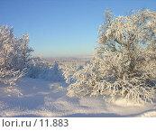 Купить «Утро в тундре», фото № 11883, снято 2 ноября 2006 г. (c) Виталий Матонин / Фотобанк Лори