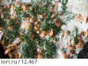 Купить «Жареные лисички в сметане с укропом (вид сверху)», фото № 12467, снято 26 мая 2006 г. (c) Лисовская Наталья / Фотобанк Лори