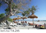 Купить «Пляж на берегу моря», фото № 14295, снято 20 апреля 2018 г. (c) Юрий Синицын / Фотобанк Лори