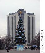 Купить «Москва. Елка в Сокольниках», фото № 14771, снято 13 декабря 2006 г. (c) Roki / Фотобанк Лори