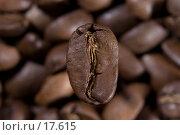Купить «Кофе в зернах», фото № 17615, снято 5 февраля 2007 г. (c) Юрий Синицын / Фотобанк Лори