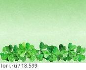 """Светло-зеленый фактурный фон с бордюром из ирландского клевера shamrock, один листик """"счастливый"""" Стоковое фото, фотограф Tamara Kulikova / Фотобанк Лори"""