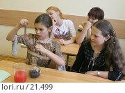 Купить «Урок химии, восьмой класс», эксклюзивное фото № 21499, снято 2 августа 2006 г. (c) Ирина Терентьева / Фотобанк Лори
