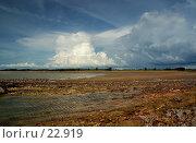 Купить «Отлив. Море Арафура, Северное побережье Австралии.», фото № 22919, снято 6 апреля 2007 г. (c) Eleanor Wilks / Фотобанк Лори