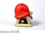 Купить «Хомячок, спрятавшийся в домике-подсвечнике», эксклюзивное фото № 24735, снято 18 марта 2007 г. (c) Охотникова Екатерина *Фототуристы* / Фотобанк Лори