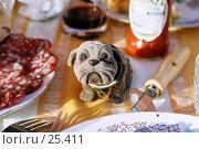 Купить «Жизнь прекрасна», фото № 25411, снято 15 августа 2018 г. (c) Дмитрий Доможиров / Фотобанк Лори