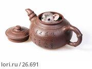 Короткошерстая крыса сфинкс спряталась в глиняном заварном чайнике с иероглифами на японский мотив. Стоковое фото, фотограф Сергей Лешков / Фотобанк Лори