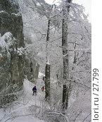 Купить «Крымская зима», фото № 27799, снято 5 февраля 2006 г. (c) Михаил Баевский / Фотобанк Лори