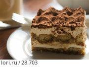 Купить «Пирожное «Тирамису» на блюдце в кафе», фото № 28703, снято 31 марта 2007 г. (c) Давид Мзареулян / Фотобанк Лори