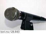 Микрофон на подставке. Стоковое фото, фотограф Fro / Фотобанк Лори