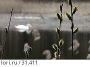 Весна на Кровавом. Стоковое фото, фотограф Андрей Явнашан / Фотобанк Лори