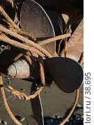 Купить «Запутанный гребной винт корабля», фото № 38695, снято 23 июля 2005 г. (c) Саломатов Александр Николаевич / Фотобанк Лори