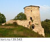 Купить «Псков, Гремячая башня», фото № 39543, снято 14 сентября 2006 г. (c) A Челмодеев / Фотобанк Лори