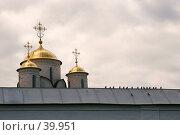 Купить «За стенами Покровского монастыря, Суздаль», фото № 39951, снято 13 августа 2006 г. (c) Vladimir Fedoroff / Фотобанк Лори