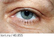 Купить «Глаз взрослой женщины», фото № 40855, снято 8 мая 2007 г. (c) Ларина Татьяна / Фотобанк Лори