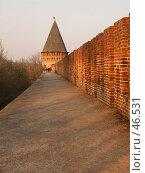 Купить «Смоленск. Прогулка под Кремлевской стеной», фото № 46531, снято 28 апреля 2006 г. (c) АЛЕКСАНДР МИХЕИЧЕВ / Фотобанк Лори