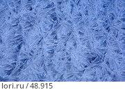 Купить «Решетка изо льда», фото № 48915, снято 22 января 2007 г. (c) Argument / Фотобанк Лори
