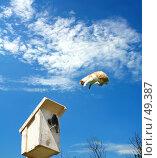 Купить «Рейдерская атака по захвату недвижимости», фото № 49387, снято 4 августа 2020 г. (c) Александр Тараканов / Фотобанк Лори